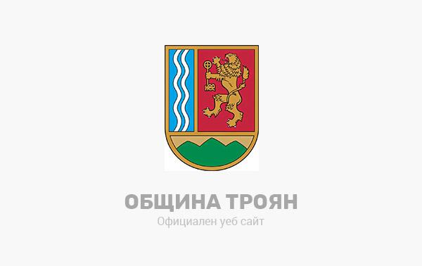 Отчет на Кмета на Община Троян за 2020 г.